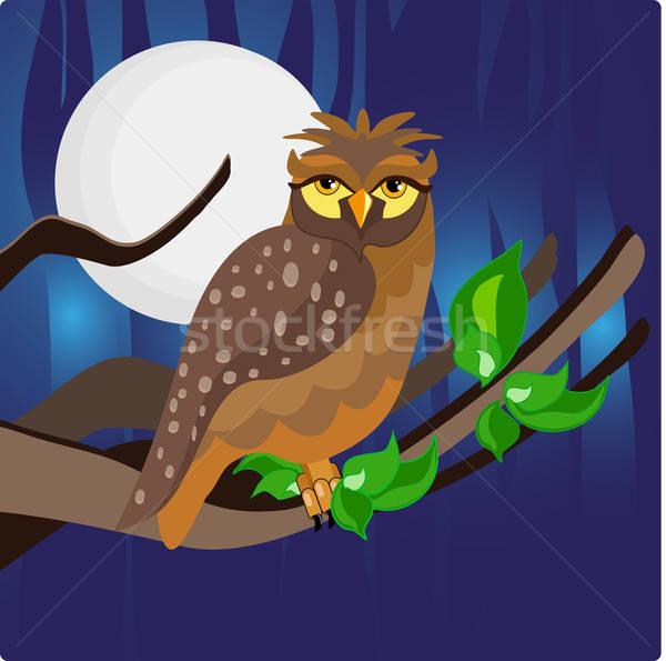 Nacht uil boom maan Stockfoto © anaklea