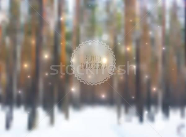 Bulanık orman dizayn ağaç doğa hareketli Stok fotoğraf © anastasiya_popov