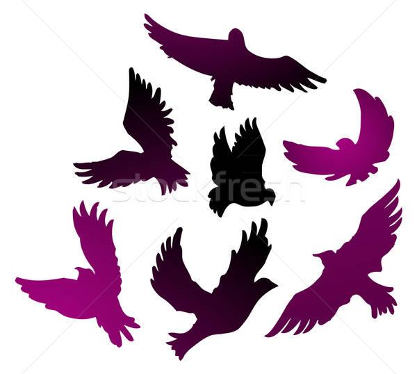 Kuşlar dizayn sanat kuş web tüy Stok fotoğraf © anastasiya_popov