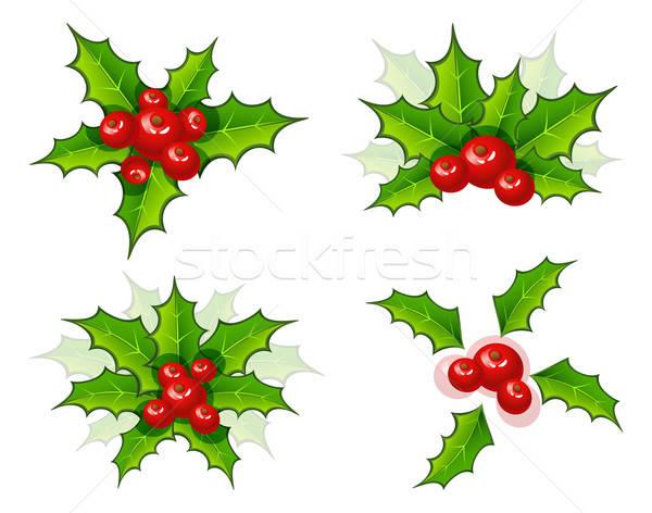 Noel şube ayarlamak ağaç dizayn yaprak Stok fotoğraf © anastasiya_popov