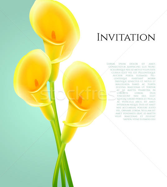 Invitation fleurs printemps jardin beauté art Photo stock © anastasiya_popov