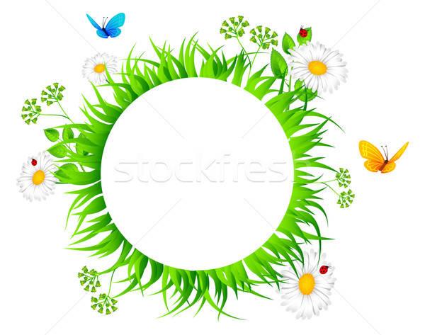 Foto stock: Verão · grama · primavera · sol · natureza · paisagem