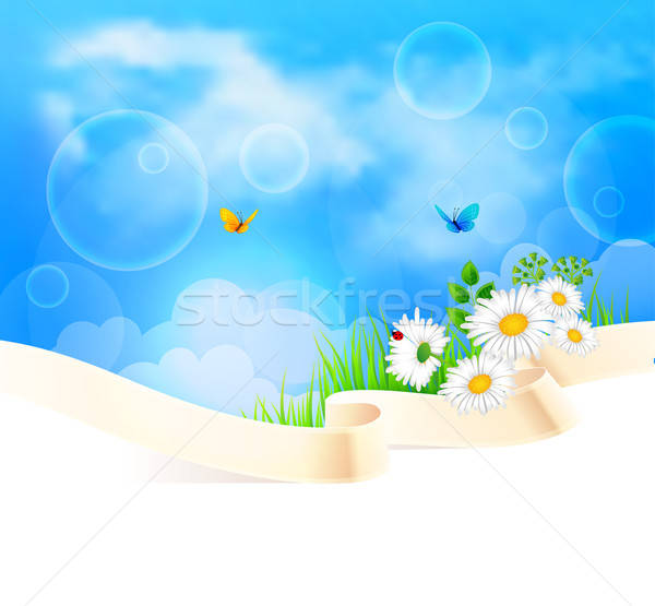 Summer background with grass Stock photo © anastasiya_popov