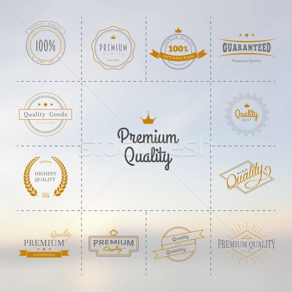 Premium quality labels set Stock photo © anastasiya_popov