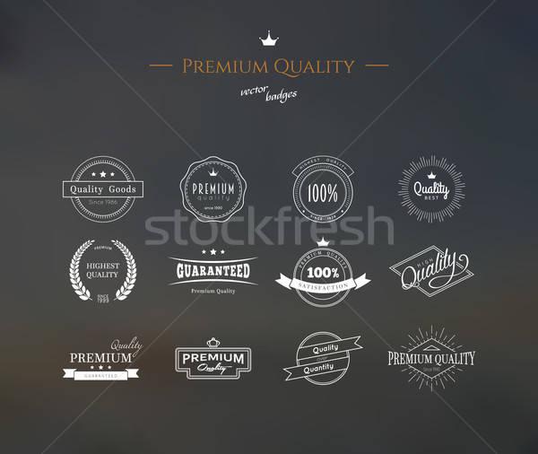Premia jakości zestaw żywności moda Zdjęcia stock © anastasiya_popov