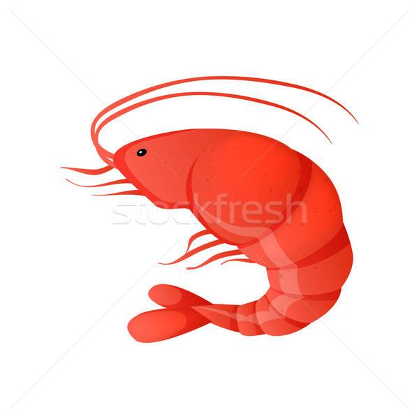 Сток-фото: красный · креветок · белый · рыбы · морем · дизайна