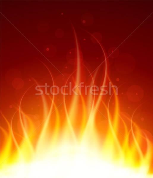 火災 抽象的な 自然 光 エネルギー ストックフォト © anastasiya_popov