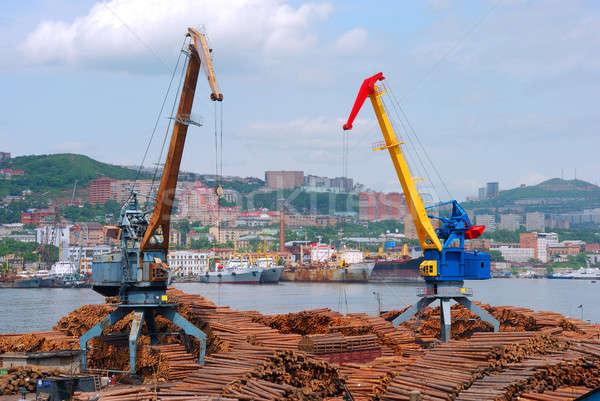 Seaport cranes Stock photo © anbuch