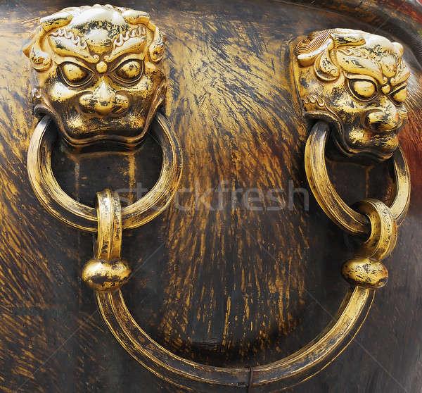 Closeup lions Stock photo © anbuch