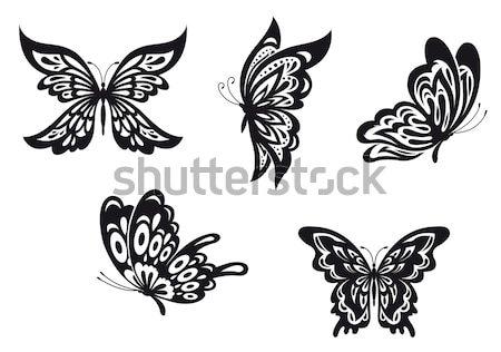 Belo borboletas conjunto projeto abstrato beleza Foto stock © anbuch