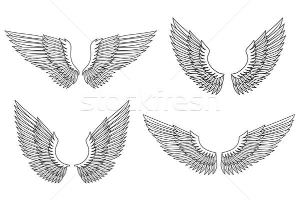 Set of wings Stock photo © anbuch