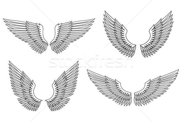 набор крыльями геральдика дизайна аннотация Сток-фото © anbuch