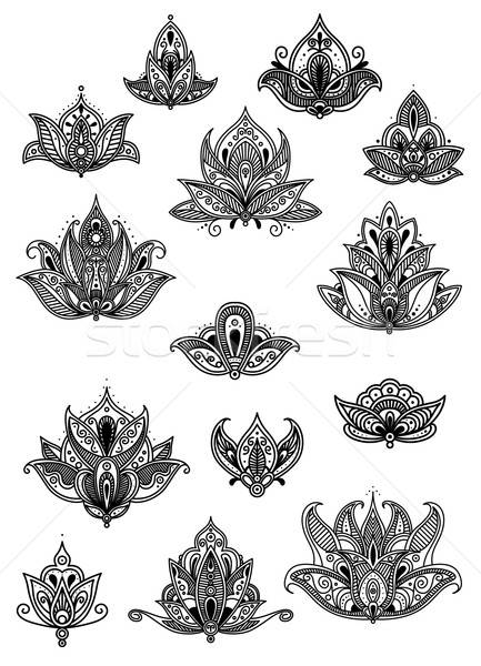 Paisley vintage flower motifs set Stock photo © anbuch