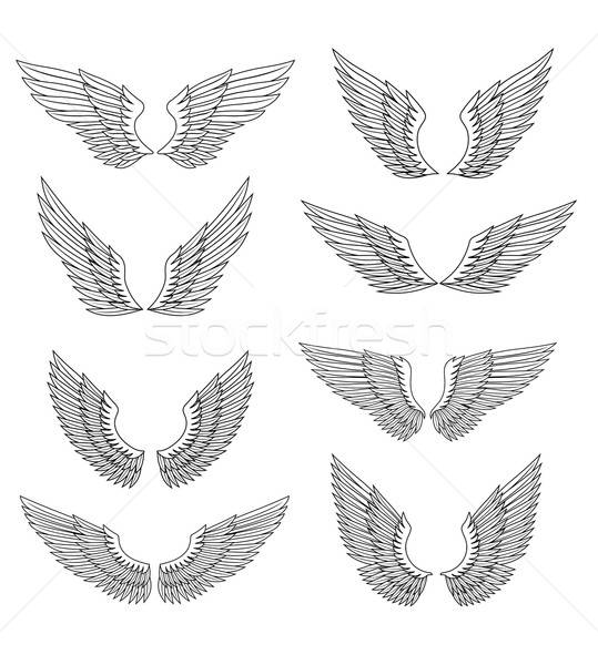 крыльями набор Перу дизайна изолированный белый Сток-фото © anbuch