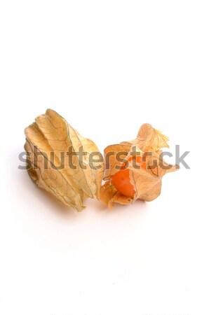 Physalis fruit Stock photo © andreasberheide
