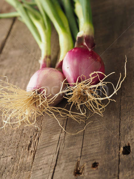 Organic spring onions on wood Stock photo © andreasberheide