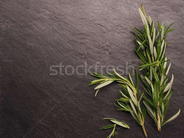 Rosemary twigs on dark slate Stock photo © andreasberheide