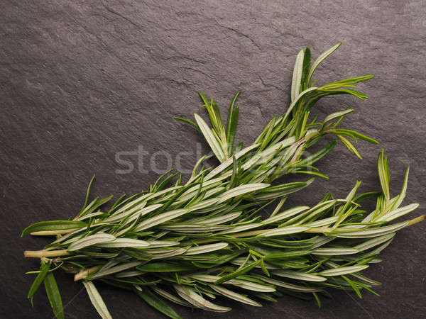Fresh rosemary twigs on slate Stock photo © andreasberheide