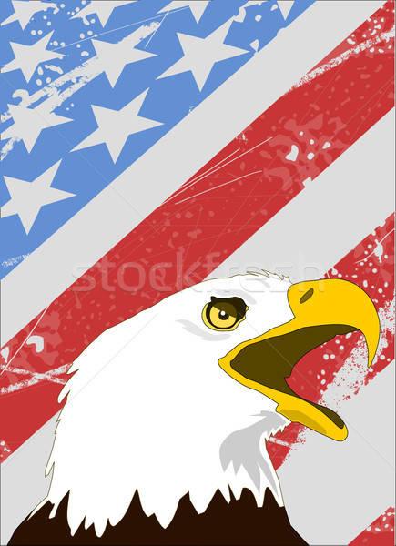 лысые орел американский флаг Гранж стиль фон Сток-фото © andreasberheide