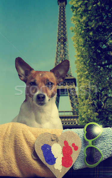 Viaggio Torre Eiffel immagine jack russell terrier vintage bagaglio Foto d'archivio © andreasberheide