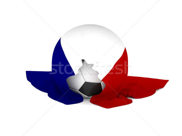 Soccer ball with the French flag Stock photo © andreasberheide