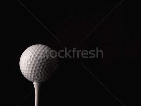 Golf ball close up Stock photo © andreasberheide