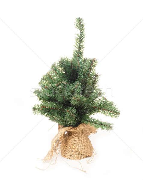 Plastic Christmas tree Stock photo © andreasberheide