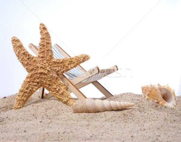 Denizyıldızı plaj seyahat beyaz arka plan yaz Stok fotoğraf © andreasberheide