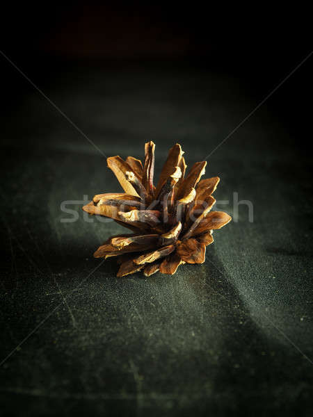 Pinecone on a scratched table Stock photo © andreasberheide