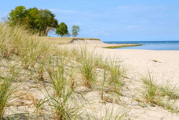 Mar báltico naturalismo praia céu nuvens fundo Foto stock © andreasberheide