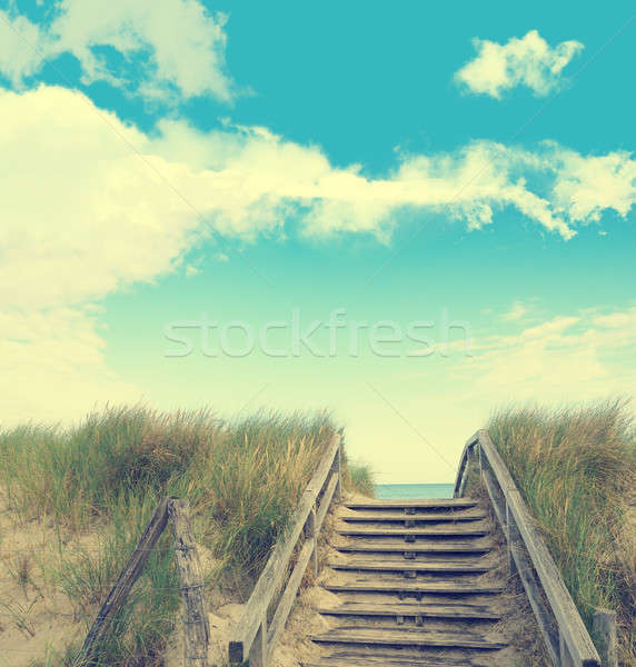 Dune grass on a blue summer sky with cloud shapes Stock photo © andreasberheide
