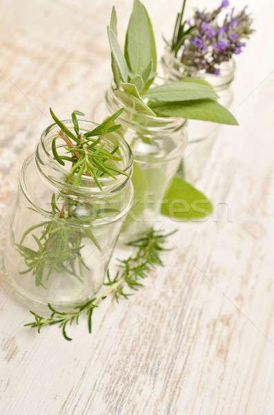 Frescos hierbas gafas tres rústico mesa de madera Foto stock © andreasberheide