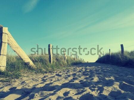To the beach Stock photo © andreasberheide