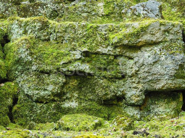 Eski kayalar yosun doğal doku ahşap Stok fotoğraf © andreasberheide