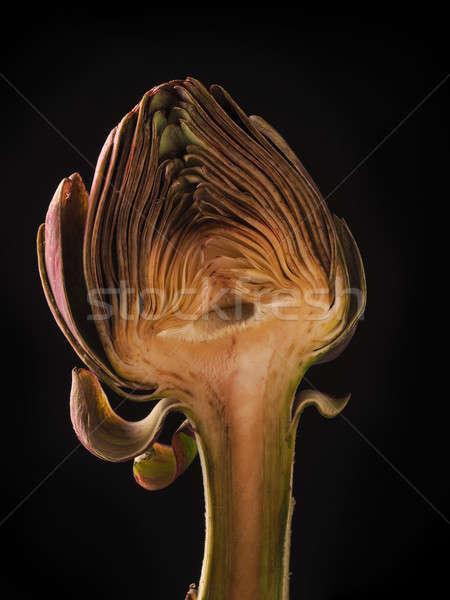 Half of an artichoke Stock photo © andreasberheide