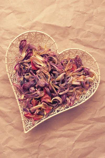 Kalp çanak yaprakları mor romantik Stok fotoğraf © andreasberheide