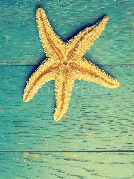 путешествия отпуск Starfish синий деревенский Сток-фото © andreasberheide