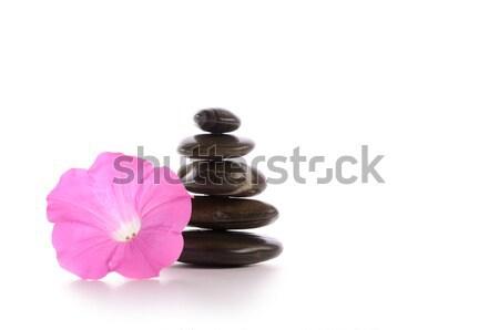 Stock foto: Gestapelt · Steine · rosa · Blume · weiß · Gesundheit · Kunst