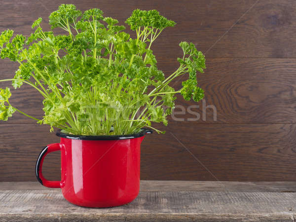 Healthy ingredients, fresh parsley Stock photo © andreasberheide