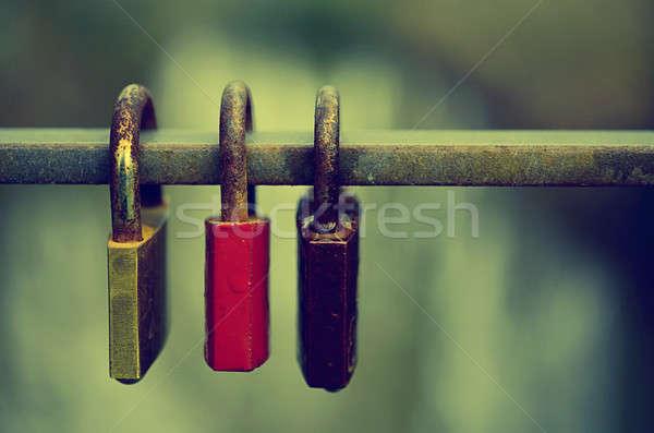 Trzy zablokowany zardzewiałe ogrodzenia shot Zdjęcia stock © andreasberheide