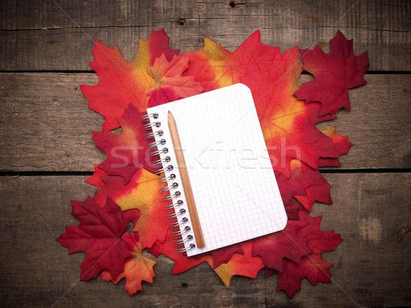 Kicsi notebook színes levelek őszi levelek rusztikus Stock fotó © andreasberheide