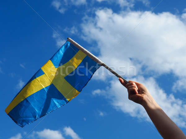 Woman with the Swedish flag Stock photo © andreasberheide