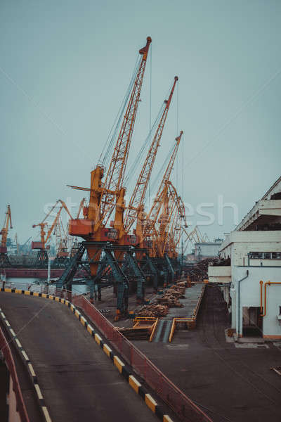 Cargo cranes, Odessa sea port Stock photo © andreonegin
