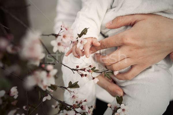ребенка прикасаться цветы рук матери Сток-фото © andreonegin