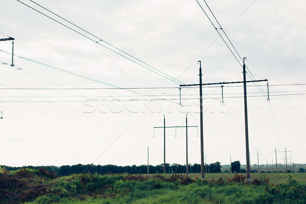 High voltage lines and power pylons in a flat and green agricultural landscape on a sunny day Stock photo © andreonegin