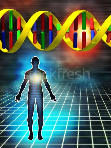 Genetisch code dna gebouw menselijke digitale illustratie Stockfoto © Andreus