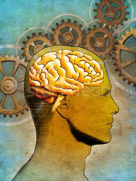 Pensando cérebro imagem humanismo cabeça ilustração digital Foto stock © Andreus