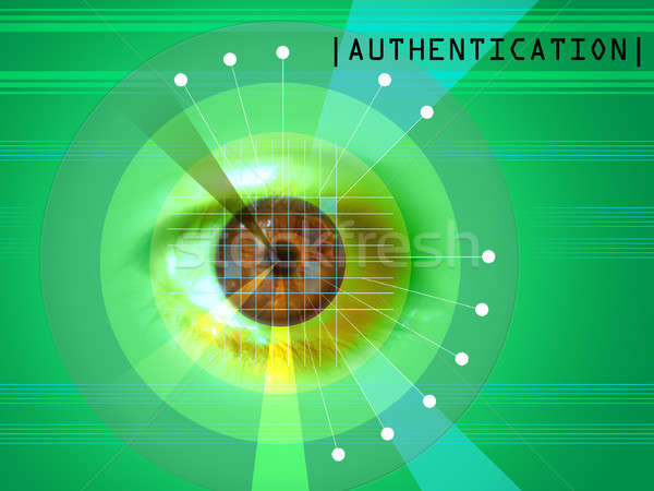 Retina scan Stock photo © Andreus