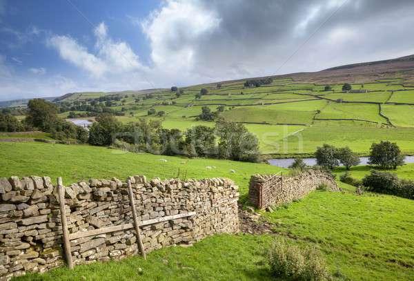 Yorkshire Dales, England Stock photo © andrewroland