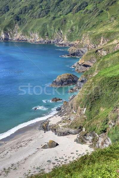 Cornish coastline in Summer, England Stock photo © andrewroland